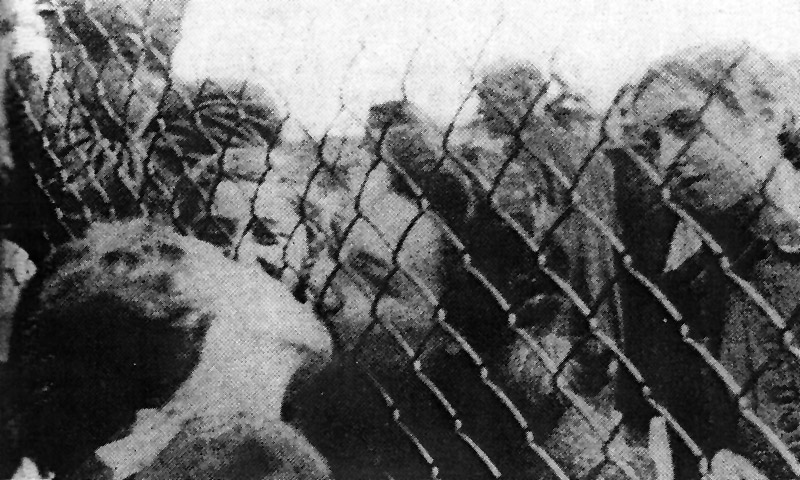 """an analysis of the jewish holocausts by the nazis and the ancient romans Students will be able to relate an overview of the history of jews in ancient and   land, such as colonies in southern italy and sicily called by the romans as """" magna  analyze the ways that the jews adapted to their home in greece and  the."""